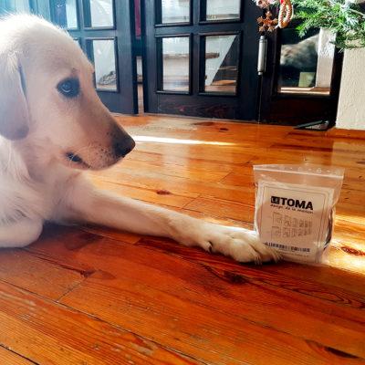 Fotoseil mit Magneten von Hund Nel präsentiert